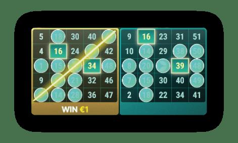 bingokaarten-zoals-die-gebruikt-worden-in-het-spel-van-evolution